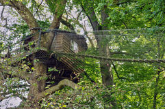 Wood hut in a tree in the park of Canon castle Royalty Free Stock Photography
