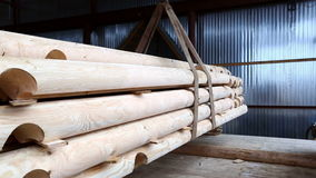Wood industry. Manipulator lifts logs for building stock video