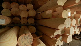 Wood industry. View of logs for building stock footage