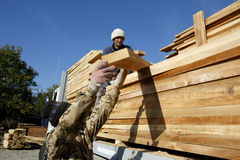 Wood industry workers Royalty Free Stock Images