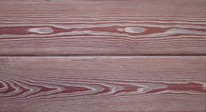 Wood - the inside of the tree. Lying under the bark Royalty Free Stock Photography
