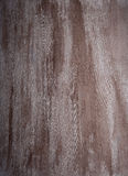 Wood ivory textured dark stains Royalty Free Stock Photos
