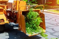 Wood käcka blåsa trädfilialer klipper det käcka a-trädet, eller wood käckt är en bärbar maskin som används för förminskande trä i Arkivfoto