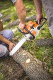 Wood klipp med chainsawen i natur royaltyfri fotografi