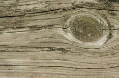 Wood Knot Royalty Free Stock Photography