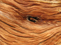 Wood knot close up Stock Photos