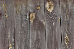Wood with knots. A new fence. It is processed against rotting Stock Photo