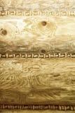 Wood knuten texturbakgrund Royaltyfria Bilder