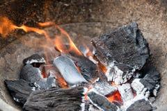 Wood kol med flammor Royaltyfri Bild