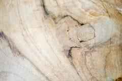 Wood korn Arkivfoton