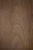 Wood korn Royaltyfri Bild