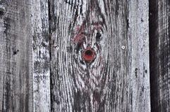 Wood kornbakgrund Royaltyfri Bild