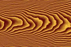 Wood korntextur Royaltyfri Foto