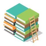 Wood ladder on stack books icon, isometric style royalty free illustration
