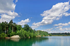 Wood lake. Lake on the bank of a pinewood. The blue sky with white clouds Royalty Free Stock Images