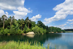 Wood lake. Lake on the bank of a pinewood. The blue sky with white clouds stock photography