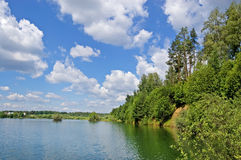 Wood lake. Lake with the turquoise water, surrounded with wood. The blue sky with white clouds stock images