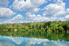 Wood lake. Lake with the pure water, surrounded with wood. The  blue sky with white clouds Royalty Free Stock Photography