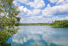 Wood lake. Lake with the pure water, surrounded with wood. The  blue sky with white clouds Royalty Free Stock Images