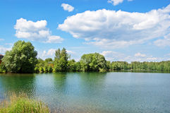 Wood lake. Lake with the pure water, surrounded with wood. The blue sky with white clouds royalty free stock image