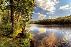 Wood lake Royalty Free Stock Photography
