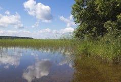 Wood Lake. Royalty Free Stock Photos