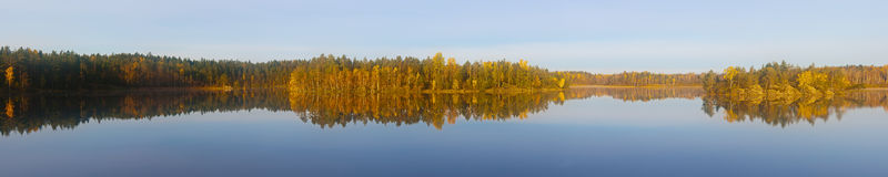 Wood lake in the autumn Royalty Free Stock Photography