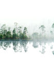 Wood lake with rising steam from a water table royalty free stock photo