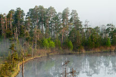 Wood lake with rising steam from a water table Royalty Free Stock Photos