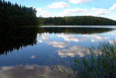Wood lake in summer. White clouds are floating in water of wood lake Stock Photos