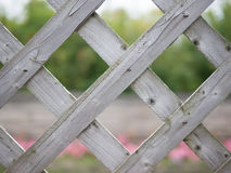 Wood Lattice Background or Texture Royalty Free Stock Photography