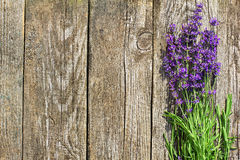 Wood Lavender Flowers Background Royalty Free Stock Photo