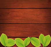 Wood Leaves background Royalty Free Stock Images