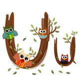 Wood Letter U owl Vector. Nature Royalty Free Stock Photos