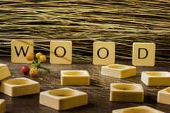 Wood in Letters. Wooden square letters spelling the word `Wood` outside next to red flowers on the concrete floor in the sunlight with colourful buildings in Stock Images