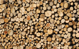 Wood log background. Pile of wood, cut in pieces for firewood Royalty Free Stock Image