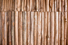 Wood log background textured Royalty Free Stock Image