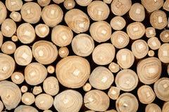 Wood log background textured Stock Image