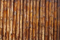 Wood log background. Textured pattern of plank wall Royalty Free Stock Images