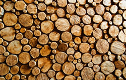 Wood log backround Royalty Free Stock Photo