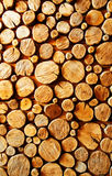 Wood log backround Stock Images
