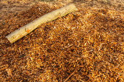 Wood log and chippings. Tree log and different sized wood chippings stock photo