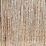 Wood log and cut bamboo background Royalty Free Stock Image