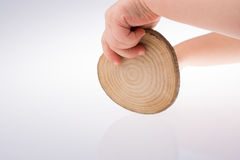 Wood Log cut in round thin pieces in hand Royalty Free Stock Photography