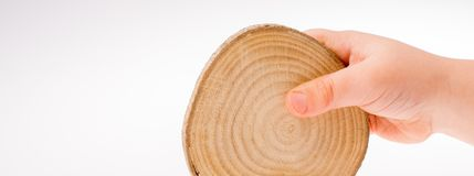 Wood Log cut in round thin pieces in hand Royalty Free Stock Photo