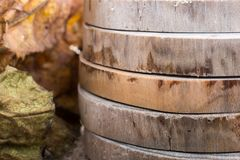 Wood Logs cut in round thin pieces. Wood Log cut in round thin pieces in view vector illustration