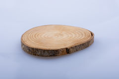 Wood Log cut in round thin pieces on white background Stock Photos