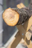 Wood log cutting Royalty Free Stock Photo