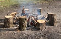 Wood Log Fire. Stock Photography