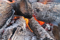 Wood Log Fire. Stock Images